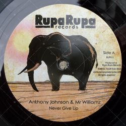 Anthony Johnson & Mr Williamz- Never Give Up