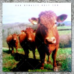 Dub Dynasty - Holy Cow