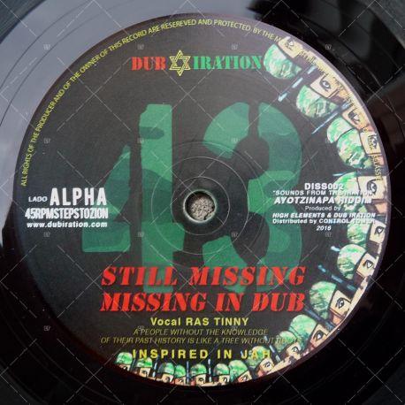 Dub Iration - Still Missing