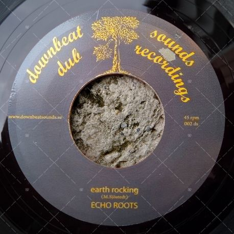 Echo Roots - Earth Rocking