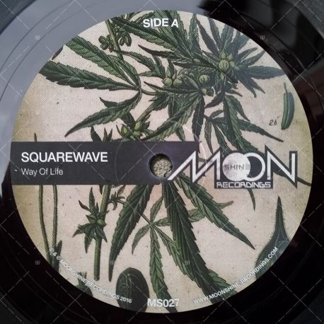Squarewave - Way Of Life