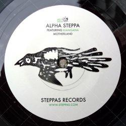 """AS7003 Steppas Records (7"""")"""