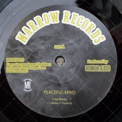 Echo Ranks - Peaceful Mind