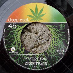 Zion Train - Warrior Step