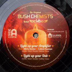 Light Up Your Amplifier (Bush Chemists RMX)