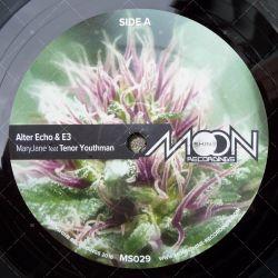 Alter Echo & E3 feat. Tenor Youthman - Mary Jane