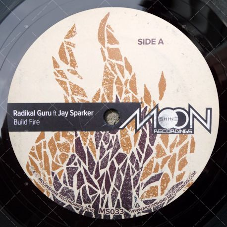 Radikal Guru feat. Jay Sparker - Build Fire