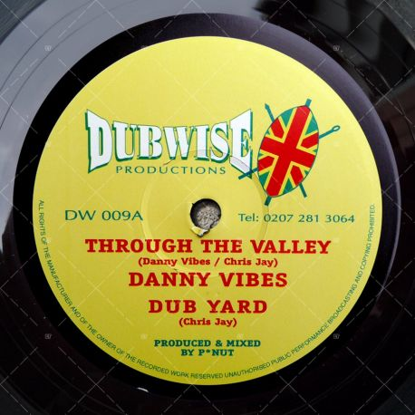 Danny Vibes - Through The Valley
