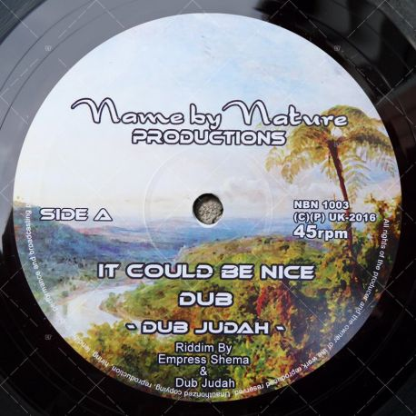 Dub Judah - It Could Be Nice
