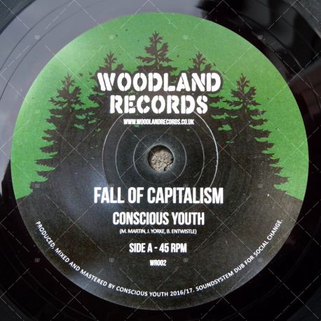 Conscious Youth - Fall Of Capitalism