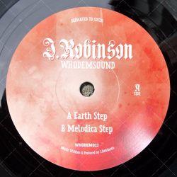 J. Robinson - Earth Step