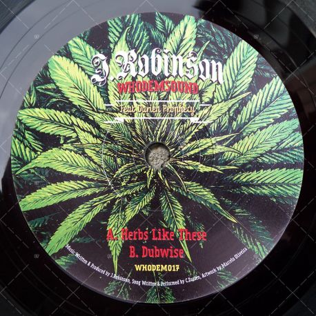 J. Robinson feat. Darien Prophecy - Herbs Like These