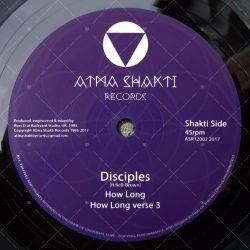 Disciples - How Long / Vibronics - Shaka The King