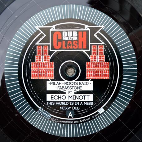 Dub Master Clash: Echo Minott - This World Is In A Mess