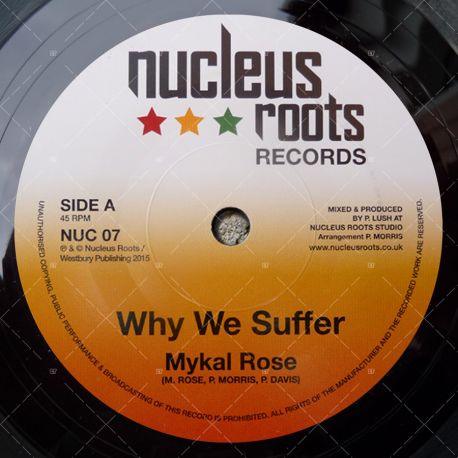 Mykal Roze - Why We Suffer