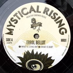 Errol Bellot - What Is Going On?